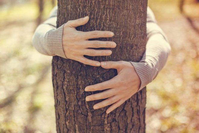 θεραπευτικό αγκάλιασμα
