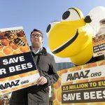 Η Ευρώπη ευαισθητοποιείται για τις μέλισσες