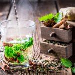 Υγεία και ομορφιά με βότανα